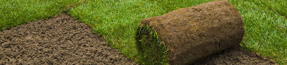 SOD Install Services in Elmhurst, IL