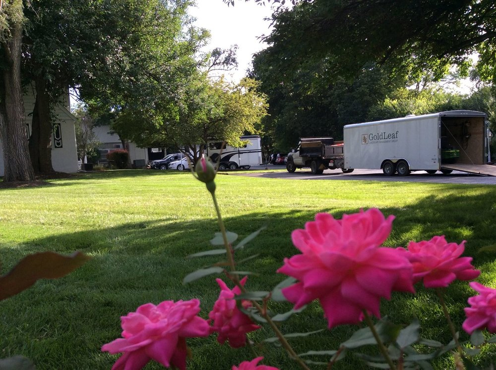 How Commercial Landscaping and Maintenance Can Help to Boost Your Business in Hinsdale, IL