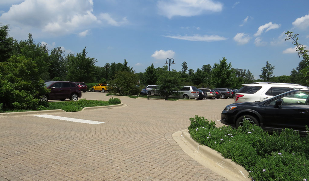 3 Common Commercial Landscaping Problems in Oak Brook, IL