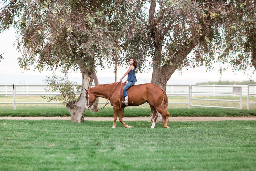 Photo by Casey Hardy, a local Bakersfield equine photographer, showing the spacious acreage and large trees in this area.