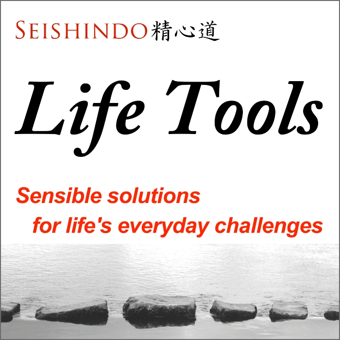 Life Tools Cover Art 1400 x 1400 v1.jpg