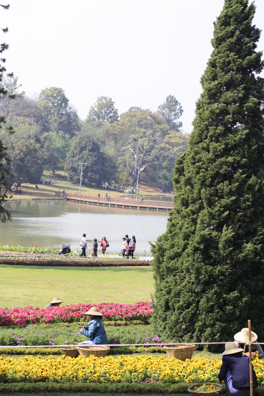 National Gardens in Pyin Oo Win