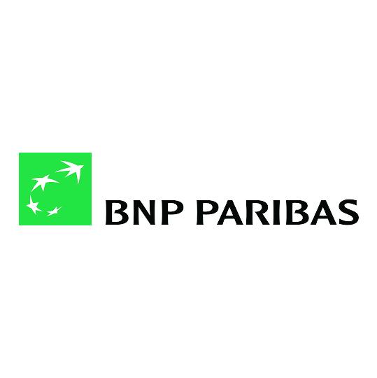 bnp-100.jpg