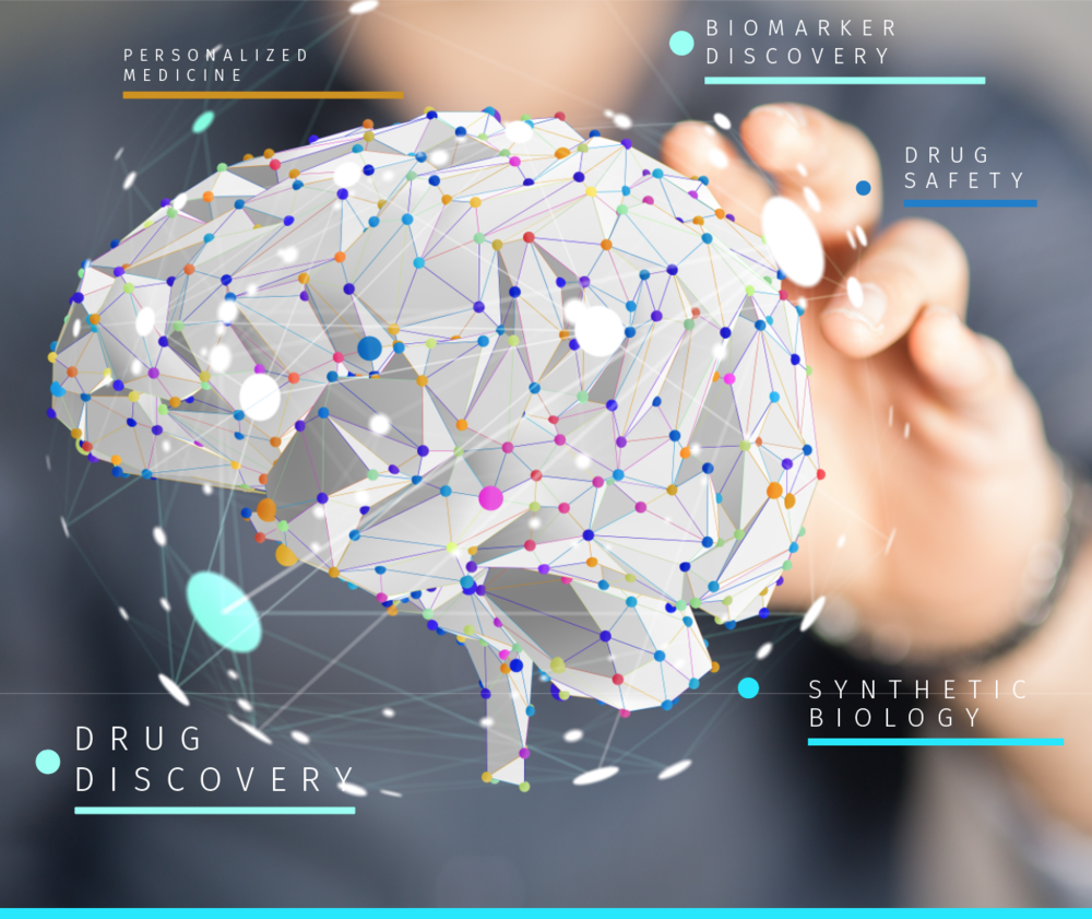 TN-Brain-AI-web.fw.png