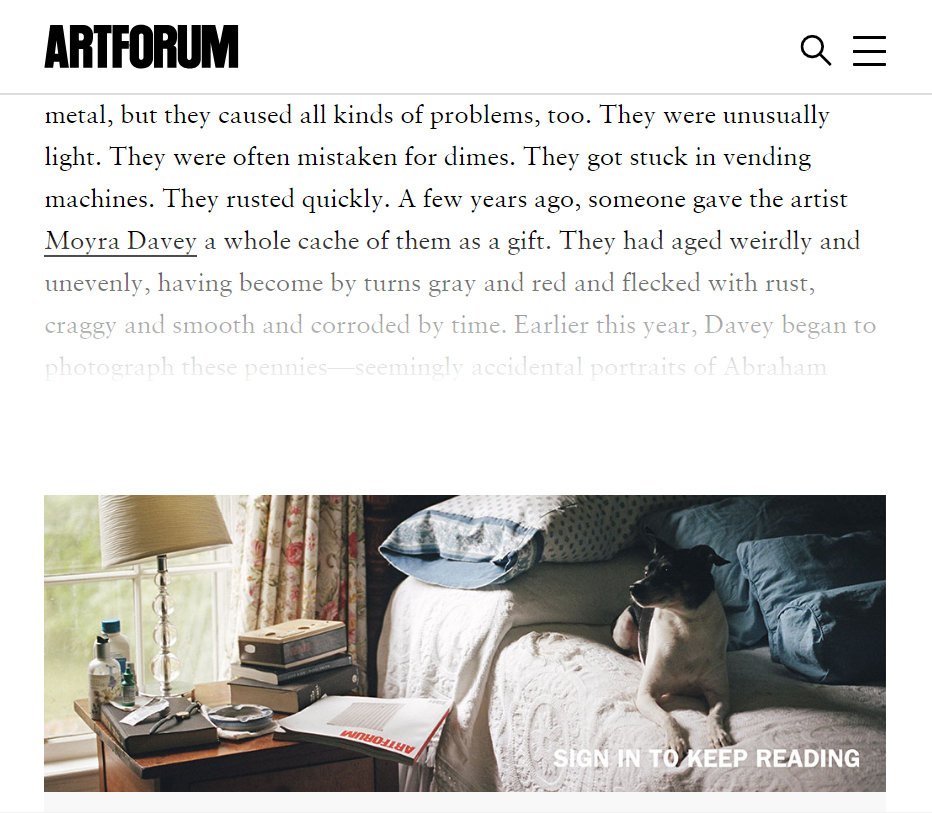 davey-artforum-dog-bed.PNG
