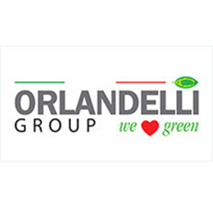 ORLANDELLI GROUP LLC - (Low Rez).png