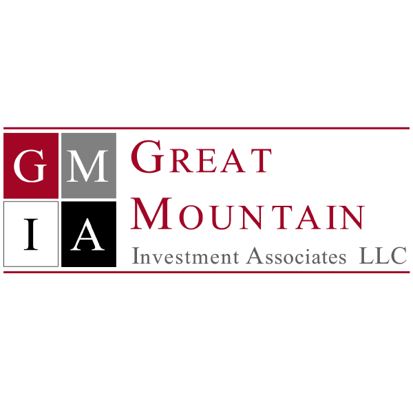 David Dammerman   David Dammerman is a principal investor with Great Mountain Investment Associates LLC. His focus is on venture stage investments.