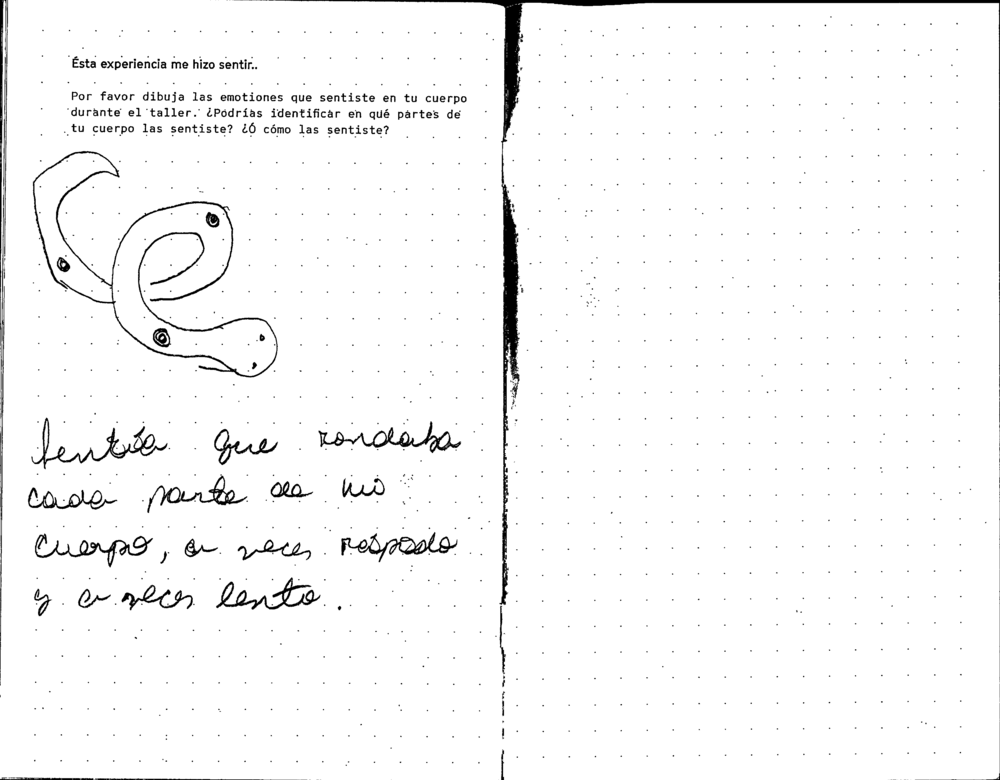 mamey_Page_010.png
