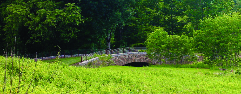1156_LongwoodMeadow_EarthBridge_CMYK.jpg