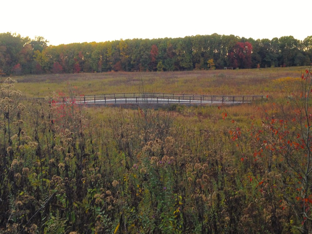 1156_Fall bridge and meadow.JPG