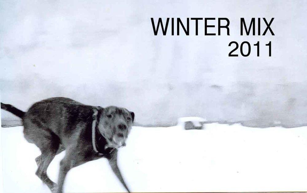 Ty Flowers Winter Mix 2011