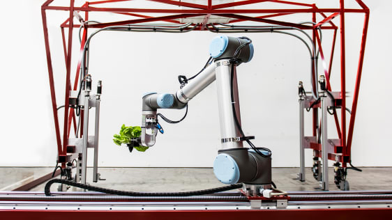 AI and Robotics in Agriculture and Farming.jpg