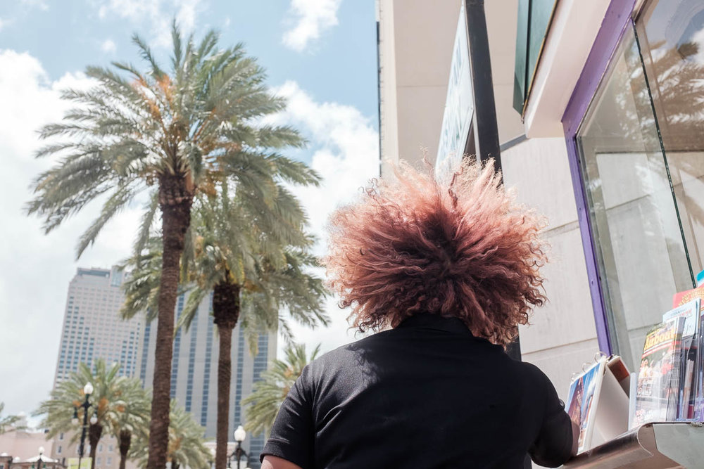 palmtreehead.jpg