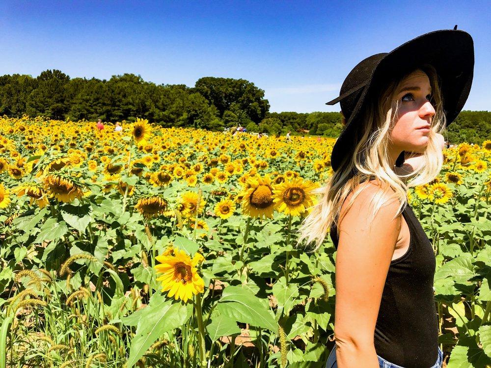 sunflowerswithhat.jpg