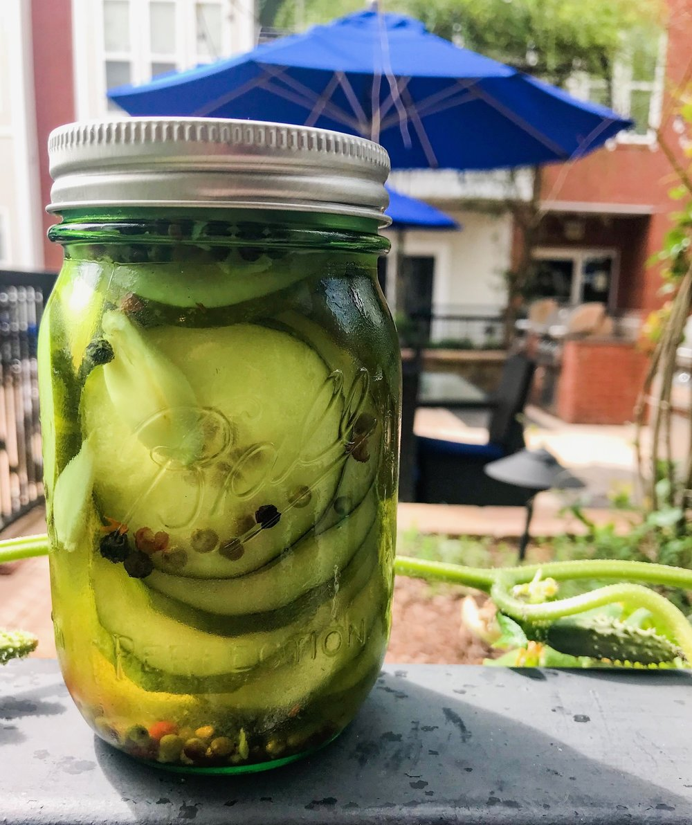 Spicy Garlic 3-Day Pickles