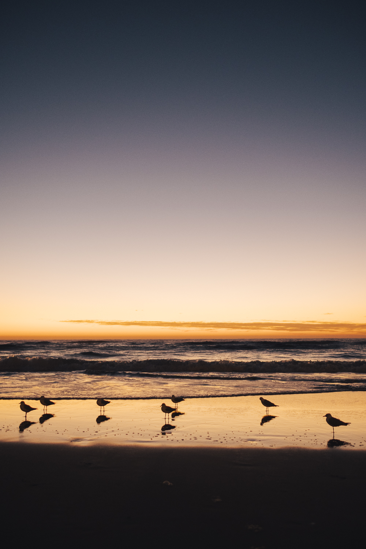Gold Coast_Queensland_Photo Ord-93.jpg