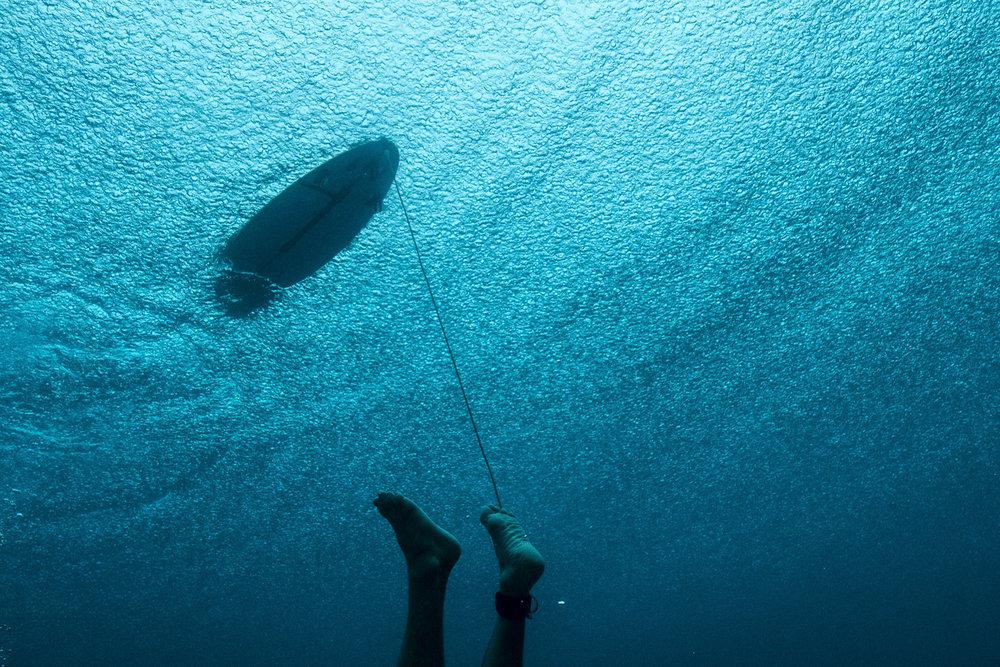 Tom Carroll_Shark Shield_Photo Ord-118.jpg