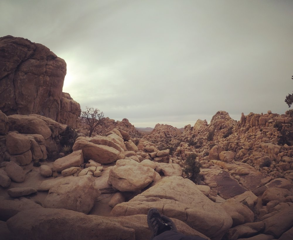 Joshua Tree Rocks.JPG