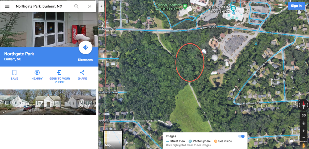 Where To Find The Hidden Dinosaur in Durham, NC | Emily Malkowski | Travel & Lifestyle Blogger