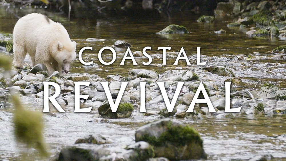 Coastal_Rev-Thumbs-_0002_ep3-min.jpg