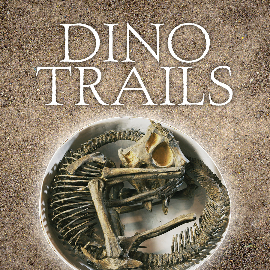 Dino Trails (2016)    Dino Trails  reveals the latest dinosaur discoveries in Canada that are making headlines around the world and explains why these locations are famous.   Learn More