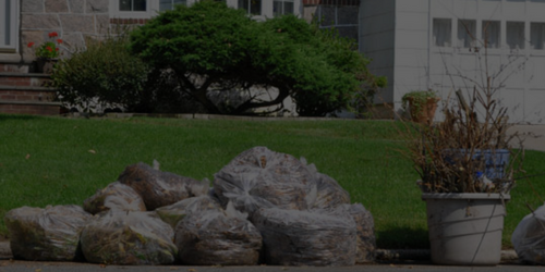 Yard Waste Disposal And Yard Waste Removal - Junk Movers