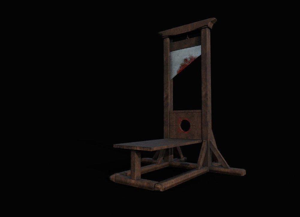 Yep, my old neighbors had several guillotines …