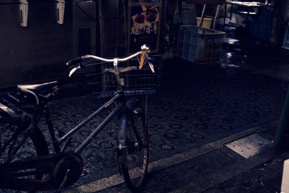 bike2_lo.jpg