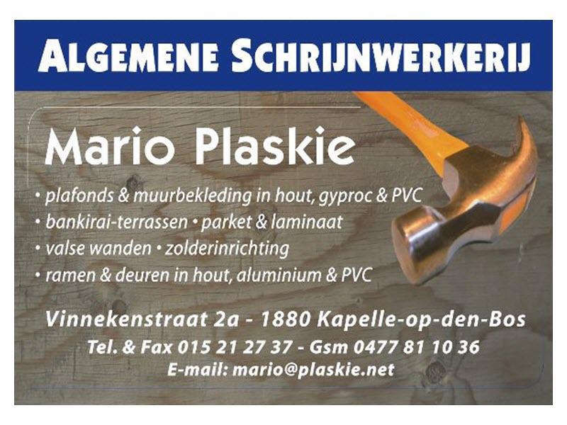 Mario Plaskie - Logo 4-3.jpg