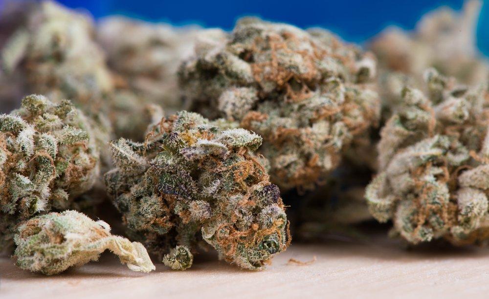 cannabis-2150543.jpg