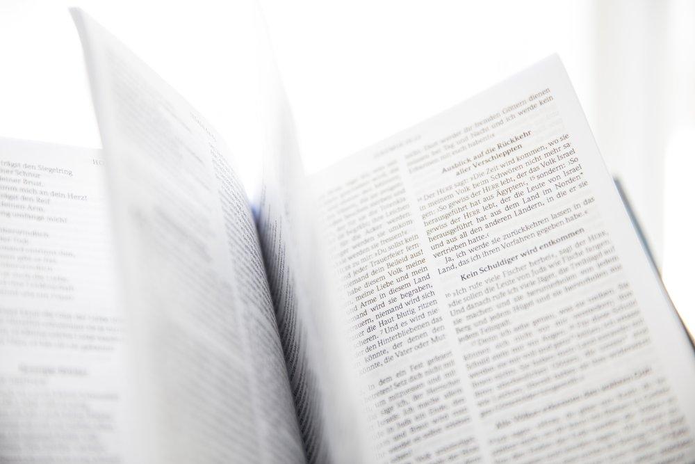 bible-blurred-background-book-954198.jpg