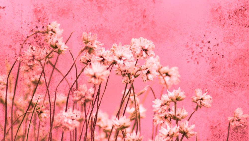 Grunge-Flowers.jpg