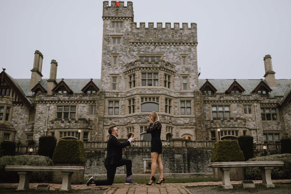 The Royal Proposal