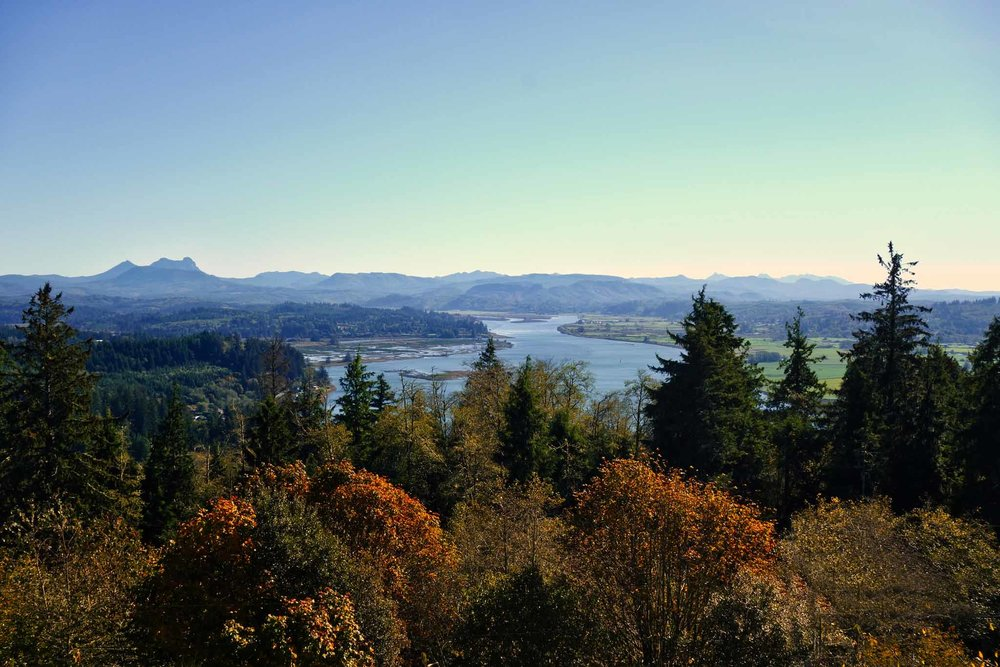 Young's River, OR as seen from the Astoria Column.
