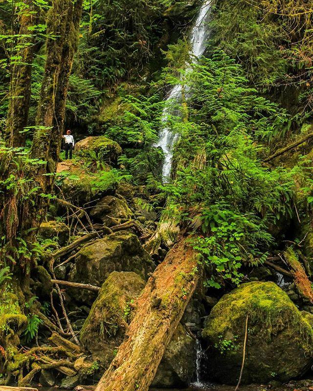Chasing Waterfalls . . . . . #exploretocreate #pnwphotographer #pnw #pnwonderland #pnwlife #pnwlove #pacificnorthwest #waterfall #waterfalls #washingtonstate #washingtonexplored #optoutside🌲 #upperleftusa #discovergraysharbor #greatergraysharbor