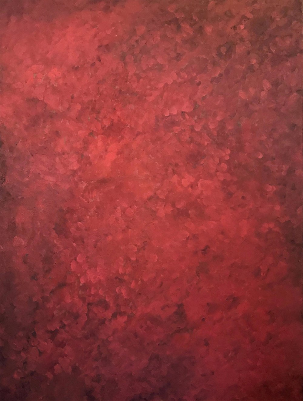 "Red II   2014  48"" x 36"" (121.9 x 91.4 cm)  oil on canvas    $7,900"