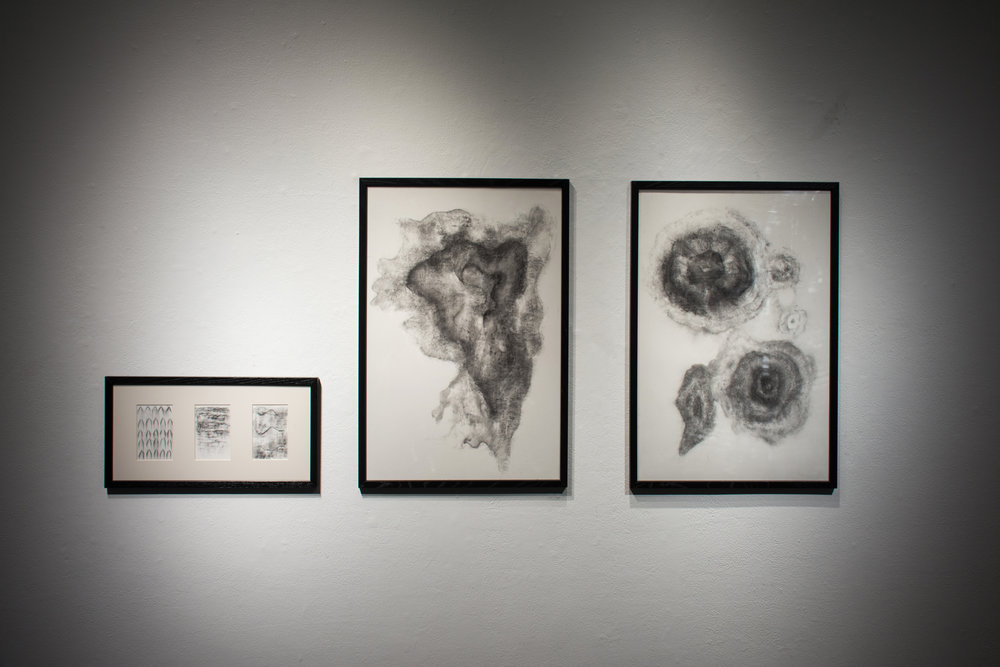 20*30in, 9.75*19.5in  March, 2018  Charcoal on Paper