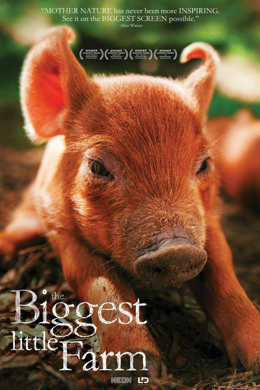 the biggest little farm poster.jpg