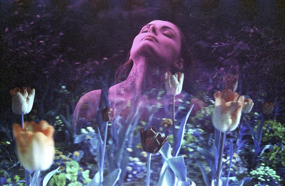 """""""Untitled"""" by La Fille Renne"""