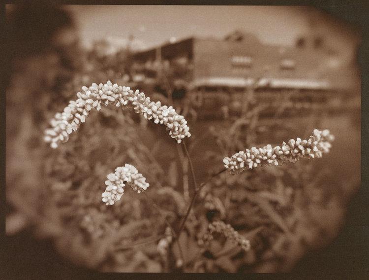 ©Melitte Buchman