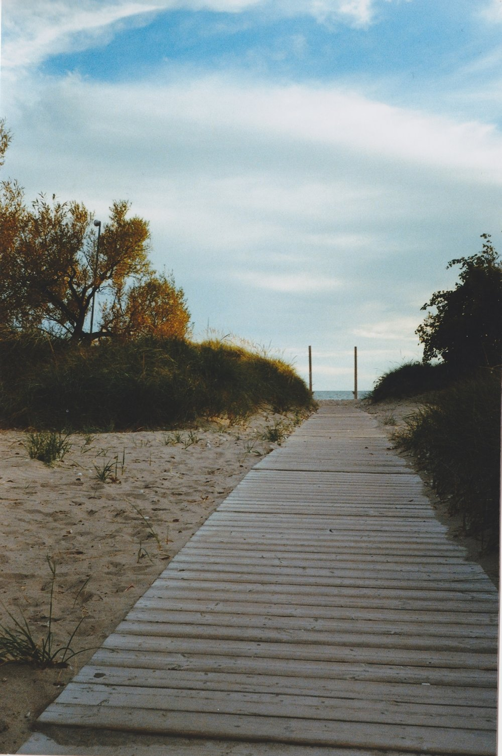 """Path to the Beach"" byAnda Marcu"