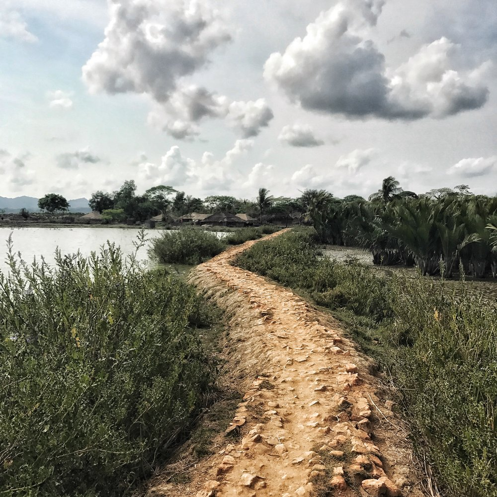 Path to a Rohingya village in Northern Rakhine State, July 2017. Photo by  Ashley S. Kinseth .