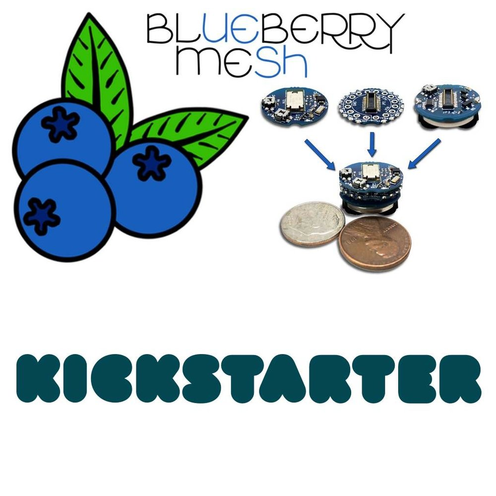 Support Blueberry Mesh by Pledging on Kickstarter.com ( click the image above )