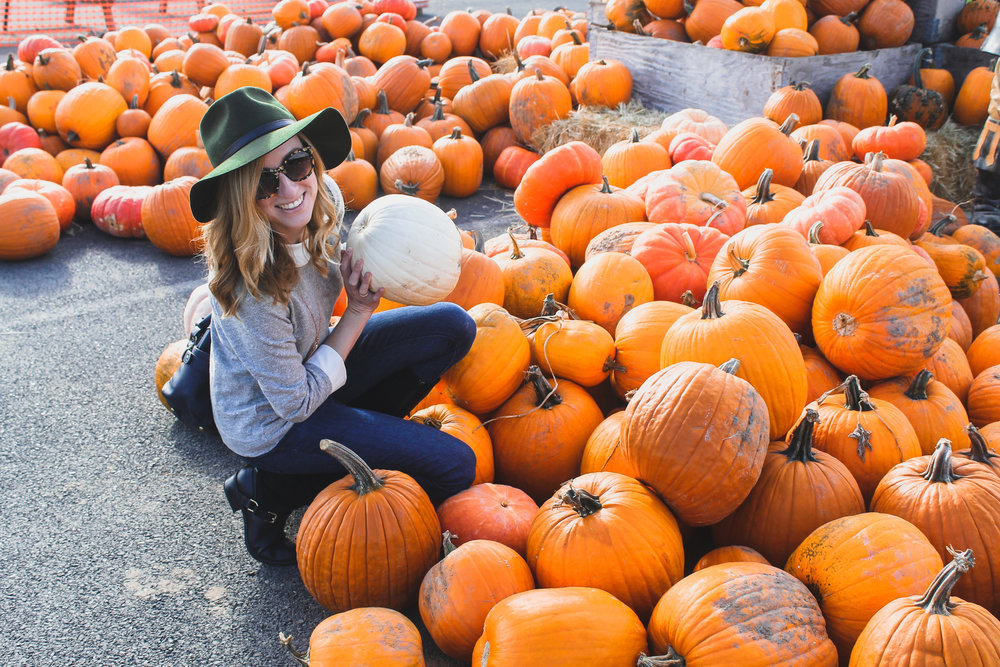 visit a pumpkin patch! -