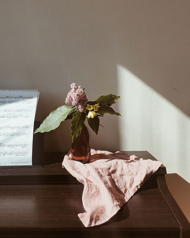 Flowers were picked along the street in the neighbourhood. Bottle was reused from an old chocolate drink. Sometimes, it doesn't cost anything to make our home a pretty place ☺️ . . . . . #home #homesweethome #homedecor #flower #sunlight #linen #lifeisbeautiful #lifestylephotography #lifestyleblogger #sustainableliving #conscious #relaxing #calm #zen