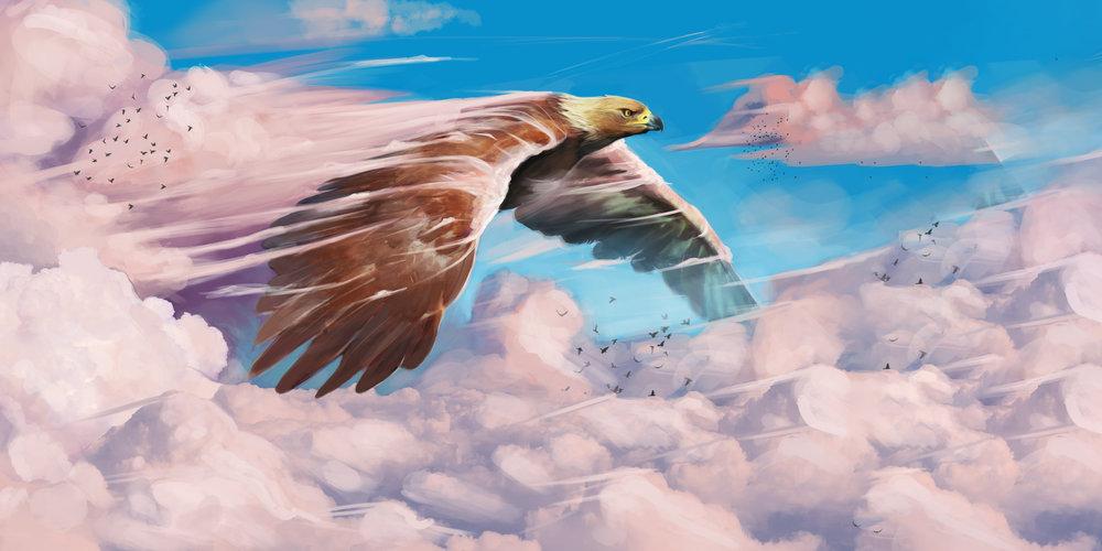 stephen-scott-thunderbird (1).jpg