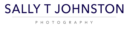 STJ_Logo_WEB SIZE.jpg