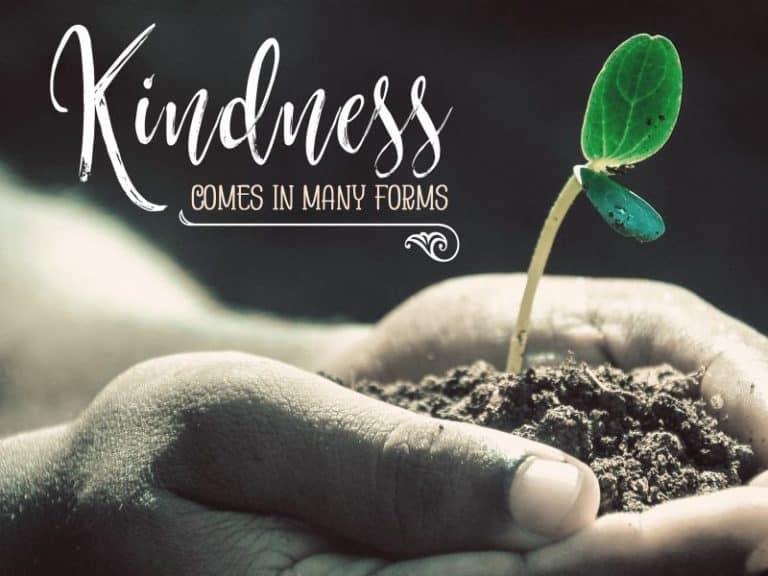 1754-Kindness-800x600-768x576.jpg