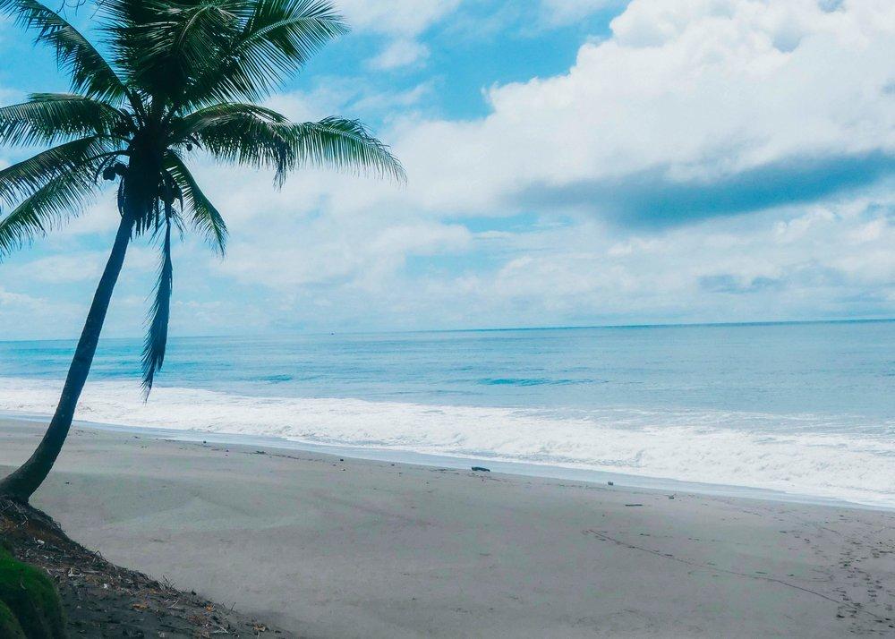 Upeita maisemia:hiekkarantoja ja sademetsää