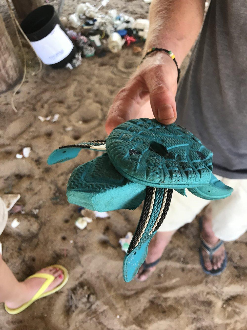 Rannalle huuhtoutunut sandaali - nykyinen kilpikonnakoriste